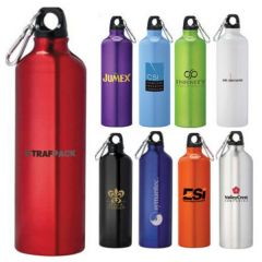 Large Simple Carabiner Sport Bottle